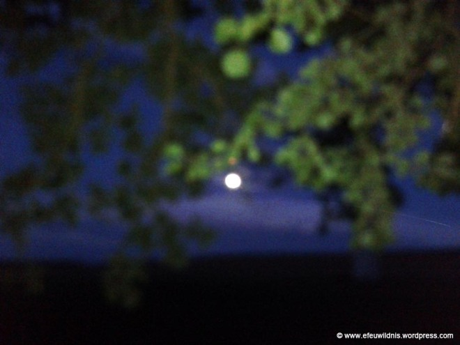 Vollmond_082017_01